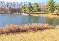 Ashe Park Trout Pond in Jefferson, North Carolina. Grass grows in the edge of this small pond found in Ashe County Park in Jefferson, North Carolina stock photo