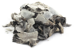 Ashes over white background Royalty Free Stock Image