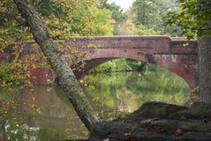 Asheville North Carolina bro Arkivfoto