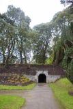 Ashford Castle - park Royalty Free Stock Image