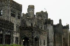 Ashford kasztel Co. Mayo, Irlandia, - Zdjęcie Royalty Free