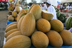 Ashgabad, Turkmenistan - 15. Oktober 2014 Wohlriechende süße Melonen Lizenzfreie Stockbilder