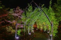 Ashikaga kwiatu park, Tochigi, sławny podróży miejsce przeznaczenia w Japonia zdjęcia royalty free