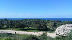 Ashkelon National Park. In the south of the country Royalty Free Stock Photography