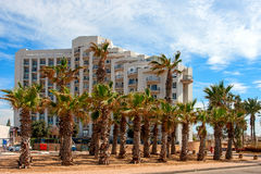 Ashkelon street with palm trees Royalty Free Stock Photos