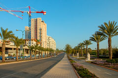 Ashkelon street with palm trees Royalty Free Stock Photo