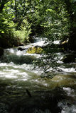 Ashland Creek at Lithia Park stock image