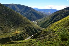 Ashley Gorge flowing through Lees Valley in New Zealand. Ashley Gorge flowing through Lees Valley in Canterbury, New Zealand royalty free stock photography