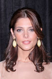 Ashley Greene lizenzfreie stockfotografie