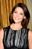 Ashley Greene Stock Images