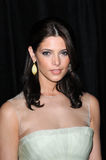 Ashley Greene Fotografia de Stock