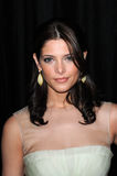 Ashley Greene Imagem de Stock