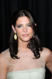 Ashley Greene Foto de Stock Royalty Free
