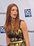 Ashley Greene stockbild