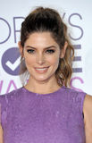 Ashley Greene lizenzfreie stockbilder