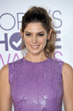 Ashley Greene Royalty Free Stock Photo