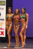 Ashley Kaltwasser, Yeshaira Robles och Stephanie Mahoe Royaltyfria Bilder