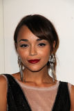 Ashley Madekwe, Four Seasons Royalty Free Stock Images
