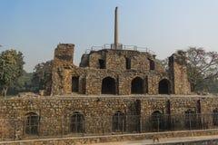 Ashoka pelare på den pyramidala strukturen och en hund i den Feroz schah Kotla Arkivfoto
