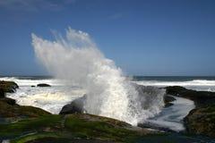 ashore приходящ стоковые фото