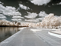 Ashore lake. Infrared photo Royalty Free Stock Photography