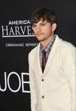 Ashton Kutcher arkivbild