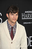 Ashton Kutcher Royalty Free Stock Images