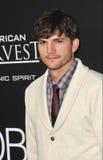 Ashton Kutcher Stock Photo