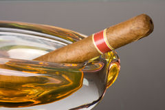 ashtray πούρο Κουβανός Στοκ εικόνα με δικαίωμα ελεύθερης χρήσης