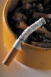 ashtray Стоковое Изображение RF