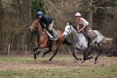 ASHURST木头,西部SUSSEX/UK - 3月26日:在Ashu附近的马骑术 图库摄影