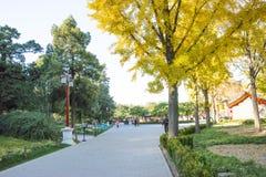 Asiático China, Pekín, parque de la colina de Jingshan, edificios históricos Fotos de archivo libres de regalías