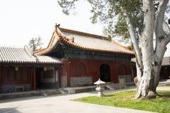 Asiático China, Pekín, parque del templo de Fahai, arquitectura antigua, pino blanco fotografía de archivo