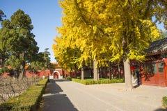 Asiático China, Pequim, parque do monte de Jingshan, construções históricas Foto de Stock