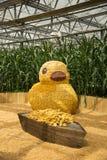 Asiático China, Pequim, pato de ŒRhubarb do ¼ de Carnivalï da agricultura, animal dos desenhos animados da pasta do milho Foto de Stock