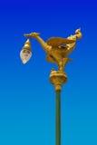 Asiático del cisne Imagen de archivo libre de regalías