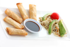 Asia. Spring rolls with soy sauce and a salad Stock Image