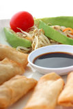 Asia. Spring rolls with soy sauce and a salad Stock Photography