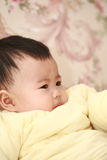 Asia baby Royalty Free Stock Images