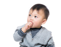Asia baby boy eating biscuit Royalty Free Stock Photo