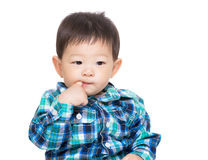 Asia baby boy suck finger Stock Image