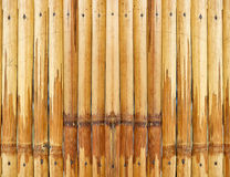 Asia Bamboo texture Stock Photos