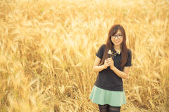 Asia beautiful glasses woman in barley field Royalty Free Stock Photography