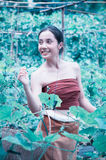 Asia beautiful woman and basket  harvesting containing zucchini Royalty Free Stock Photos