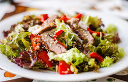 Asia beef salad. Asian beef salad with fresh lettuce Stock Photos