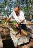 Asia beekeeping, Vietnamese beekeeper, beehive. DA LAT, VIET NAM- MAY 3: Asia farmer with beekeeping, Vietnamese beekeeper take beehive among jungle, honey is stock photography
