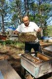 Asia beekeeping, Vietnamese beekeeper, beehive. DA LAT, VIET NAM- MAY 3: Asia farmer with beekeeping, Vietnamese beekeeper take beehive among jungle, honey is stock images