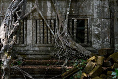 ASIA CAMBODIA ANGKOR BENG MEALEA Royalty Free Stock Images