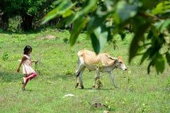 ASIA CAMBODIA SIEM RIEP TONLE SAP Royalty Free Stock Photos
