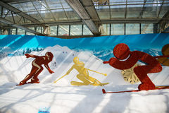 Asia China, Beijing, agricultural carnival, indoor exhibition hall, scene,skiing Stock Photos